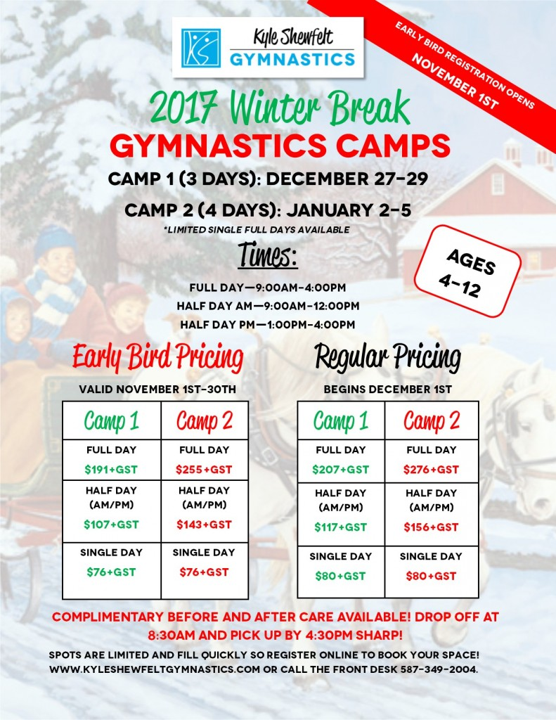 Winter Camp 2017 flyer